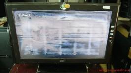 Tivi bị phồng dộp